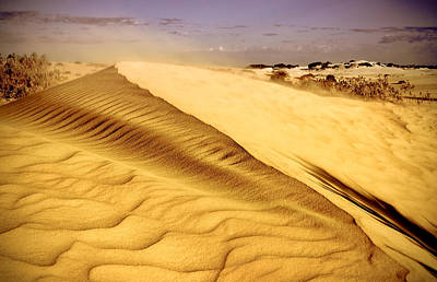 Shifting Sands Art Print by Heather Thorning