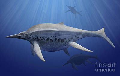 Triassic Digital Art - Shonisaurus Popularis Swimming by Sergey Krasovskiy