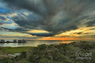 Photograph - Shore Brush Sunrise by Adam Jewell