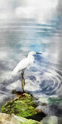 Digital Art - Shoreline Egret by Francesa Miller