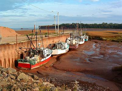 Photograph - Shorelines Kingsport Wharf Nova Scotia Canada by William OBrien