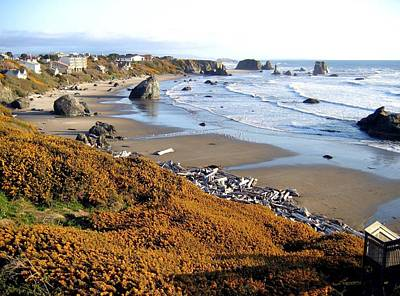 Photograph - Shores Of Oregon by Will Borden