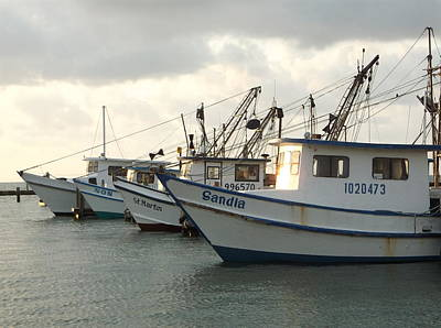 Photograph - Shrimp Boats In The Bay by Stacey Robinson