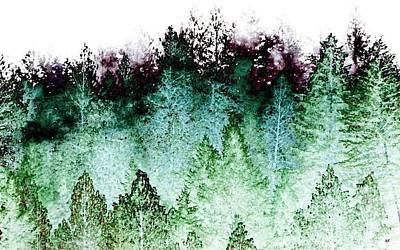 Designs In Nature Digital Art - Shrouded In Fog by Will Borden