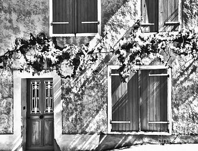 D700 Photograph - Shutter And Vine France 2011 by Jack Torcello