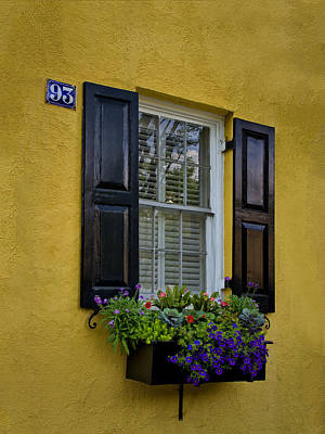 Shutters And Window Boxes Art Print by Sandra Anderson