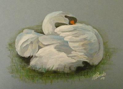 Shy Swan Art Print by Tersia Brooks