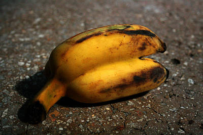 Photograph - Siam Banana by Jennifer Bright