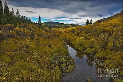 Photograph - Sibald Creek Valley by Edward Kovalsky