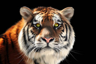 Tigris Digital Art - Siberian Tiger by Julie L Hoddinott