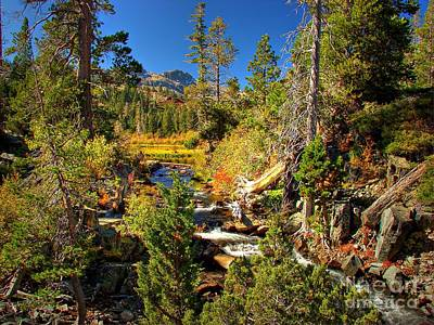 Fallen Leaf Photograph - Sierra Nevada Fall Beauty At Lily Lake by Scott McGuire