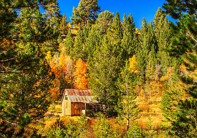Sierra Nevada Rustic Americana Barn With Aspen Fall Color Art Print by Scott McGuire