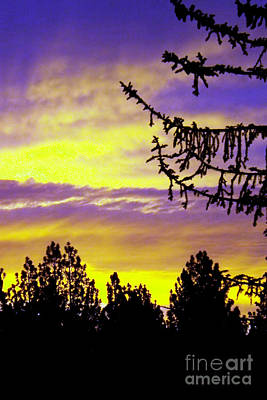 Photograph - sierra Sunrise by Gary Brandes