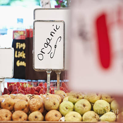 Sign Advertising Organic Produce Art Print by Jetta Productions, Inc