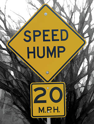 Photograph - Sign Speed Hump by Michael Flood