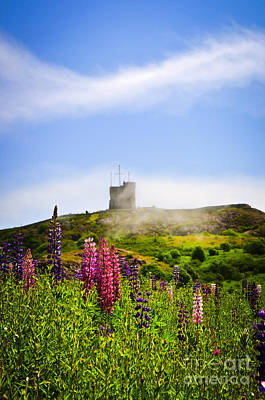 Fortification Photograph - Signal Hill In St. John's Newfoundland by Elena Elisseeva