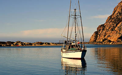 Boats In Morro Bay Photograph - Silent Harbor by Fraida Gutovich