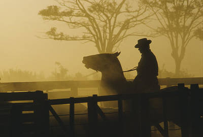 Working Cowboy Photograph - Silhouette Of Man Riding Horse At Dusk by Nicolas Russell