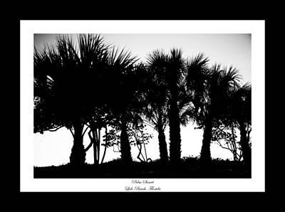 Silhouette Palm Sunset Art Print by Betsy Knapp