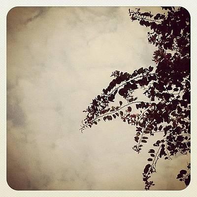 #silhouette #simple #pathway #park Art Print