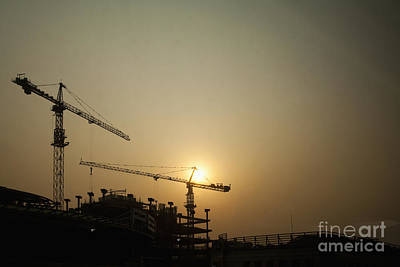 Silhouetted Construction Cranes Art Print by Shannon Fagan