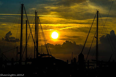 Photograph - Silhouettes At The Marina by Shannon Harrington