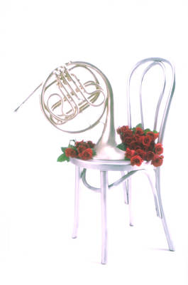 Silver French Horn On Silver Chair Art Print by Garry Gay