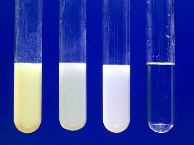 Testtubes Photograph - Silver Halide Precipitates by Andrew Lambert Photography
