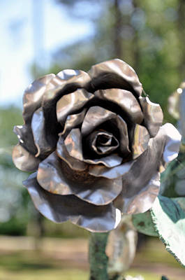 Art Print featuring the photograph Silver Rose by Helen Haw