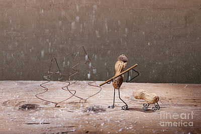Still Life Royalty-Free and Rights-Managed Images - Simple Things - Christmas 04 by Nailia Schwarz