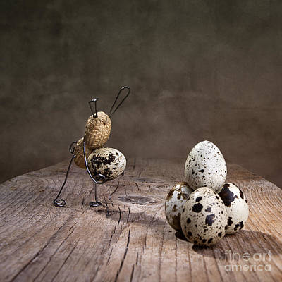 Easter Bunny Photograph - Simple Things Easter 07 by Nailia Schwarz