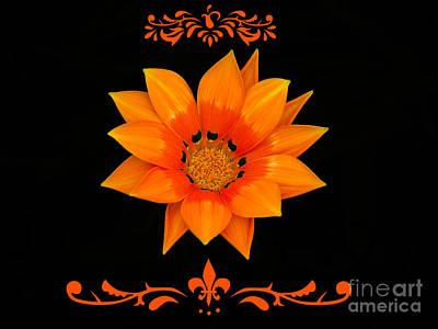 Embellished Photograph - Simply Orange by Karen Lewis