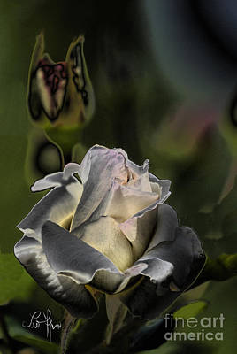 Sinful Rose Art Print by Leo Symon