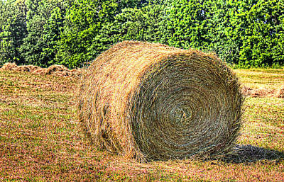 Single Bale Art Print by Barry Jones