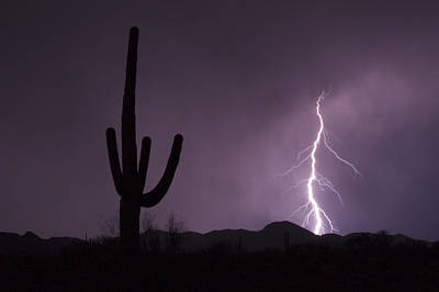 Lightnings Of Arizona Photograph - Single Lightning Bolt Strikes by Mike Theiss
