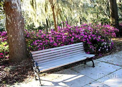 Photograph - Sit A Spell In Savannah by Carol Groenen