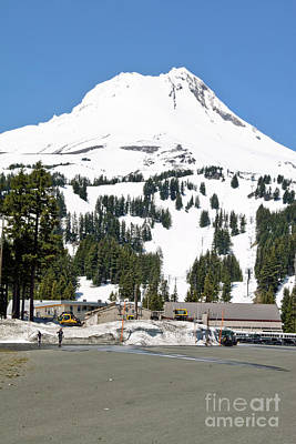 Photograph - Ski Camp On Mt. Hood Oregon by Sherry  Curry