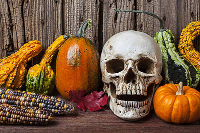 Photograph - Skull And Gourds by Garry Gay