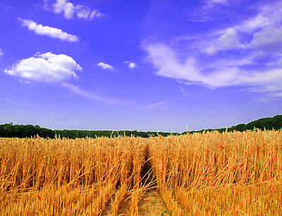 Sky Over The Field 3 Ae  Art Print by Lyle Crump
