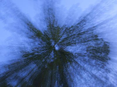 Photograph - Sky Through Trees by Katherine Huck Fernie Howard