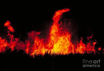 Slash And Burn Agriculture Art Print by Dante Fenolio