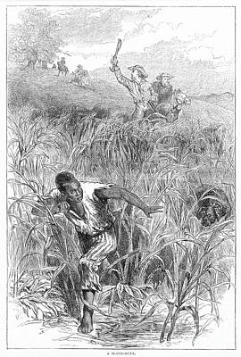 Overseer Photograph - Slave Hunt, 19th Century by Granger