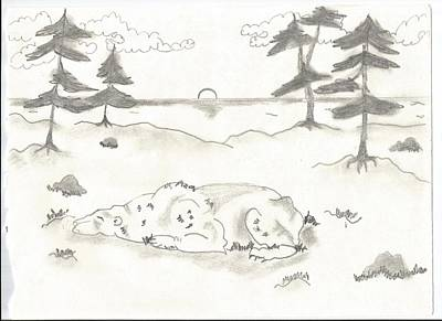 Drawing - Sleeping Bear by Barbara Gallagher