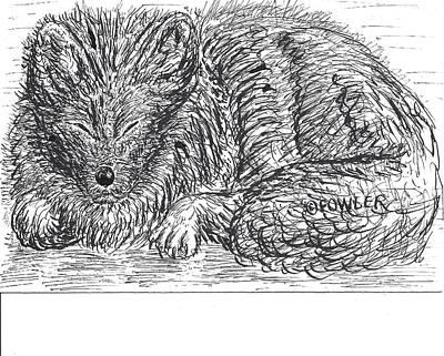 Sleepy Fox Art Print by John A Fowler