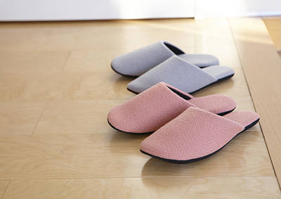 Y120831 Photograph - Slippers by QxQ IMAGES/Datacraft