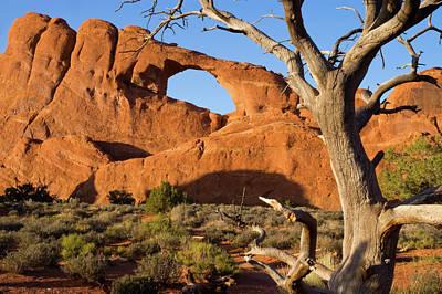 Photograph - Slyline Arch by Steve Stuller
