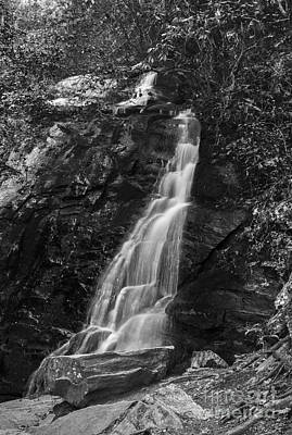 Photograph - Small Cascade by David Waldrop