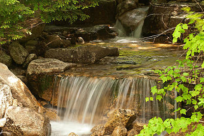 Photograph - Small Stream by Paul Mangold