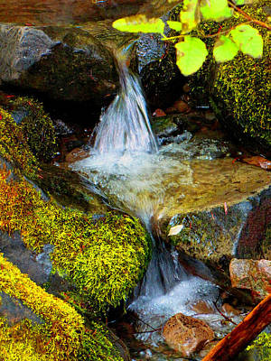 Water Photograph - Small Waterfalls by Marie Jamieson