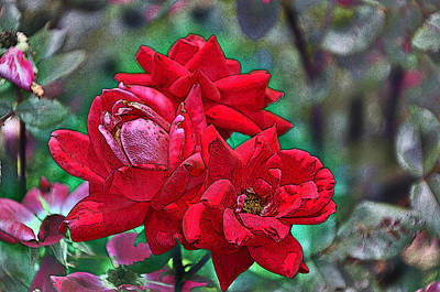 Smell The Roses Art Print by Paul Mashburn